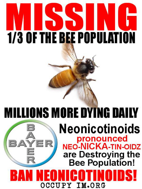 Missing: 1/2 of the world's bee population! Bayer's Neonicotinoids are killing the world's bees!!!